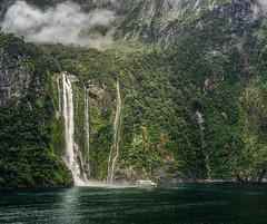 "Milford Sound • <a style=""font-size:0.8em;"" href=""http://www.flickr.com/photos/7605906@N04/26533144735/"" target=""_blank"">View on Flickr</a>"