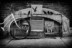 White bike, black birds (Dan Fleury) Tags: street city urban white black brick bird bike wall poster graffiti stonelocationsnewyorkcityphotography