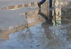 walking on water (mcfcrandall) Tags: toronto tree feet water reflections walking pond legs walk walker puddles topw torontophotowalks