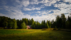 in the middle of nowhere (Mris Pehlaks) Tags: morning blue autumn trees sky white green nature field grass clouds landscape outdoor country latvia sunlit