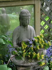 The Buddha's Bouquet (prima seadiva) Tags: reflection statue mirror buddha april mygarden bandname lamium thrifted