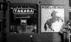 Don't walk (chrisroach) Tags: blackandwhite bw horse paris window monochrome shop blackwhite mosaic stop guidebook parisfrance 4er 4erarrondissement