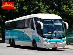 DSC_0999 (busManaCo) Tags: bus fotografia nibus  marcopolo autobs  bussi    valokuvaus busmanaco nikond3100