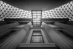 path to enlightenment (vulture labs) Tags: london architecture nikon interior british britishmuseum thebritishmuseum 1424mm vulturelabs