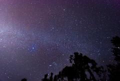 DSC_8729.jpg (Boy of the Forest) Tags: trees sky field fog night stars landscape florida meadow wideangle astro galaxy astrophotography astronomy fl nightsky 15mm milkyway gemeni gemonidsmeteorshower