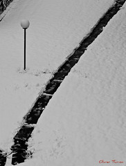 1er trace (Olivier Thirion) Tags: bw snow hiver nb neige froid blancheur nikond3 olivierthirion nikon24120f4