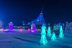 DSC09492.jpg (victoriaswebs) Tags: winter kazakhstan astana