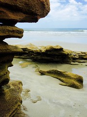 Washington Oaks Gardens State Park, Florida (Andy Montgomery) Tags: ocean beach seaside florida joy 2015 iphone5s