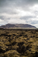 Berserkjahraun lava field (Expectmohr) Tags: iceland snfellsnes ijsland berserkjahraun snfellsnespeninsula berserkjahraunlavafield