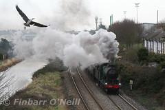 Ratoath Road (finnyus) Tags: ireland dublin irish train rail railway trains steam railways steamengine irishrail steamtrain steamlocomotive 461 2016 steamloco rpsi iarnrdireann irishrailways irishrailway ratoathroad irishrailwaynetwork