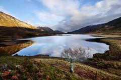 Glen Strathfarrar (Gavin MacRae) Tags: scotland farrar glenaffric scottishlandscape highlandsofscotland scottishlandscapes scottishloch glencannich scottishlochs strathfarrar strathglass glenstrathfarrar highlandlandscape riverfarrar lochamhuillidh chisholmcountry lochamuillidh