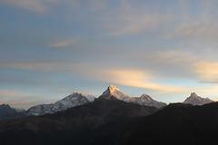 Poon Hill - Dhaulagiri, Annapurna, Machapuchre Mountain Range (rajeev maskey) Tags: nepal mountains nature sunrise trekking hiking pokhara annapurna himalayas poonhill dhaulagiri machapuchre