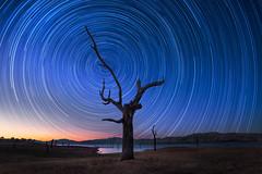 Revolution (Bruce_Hood) Tags: lake tree night landscape star nightscape trails astro hume