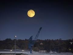 der Mond geht auf... (wolfi-rabe) Tags: kiel mondaufgang ostufer