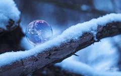 Bubble World (Frank Wiegand Photography) Tags: schnee winter snow forest canon frank landscape photography soap ast fotografie bokeh earth bubble 18 landschaft wald blase blende draussen erde wiegand erdkugel