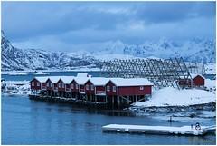 Rorbuer huisjes (HP003437) (Hetwie) Tags: winter snow nature norway night landscape see vakantie sneeuw natuur zee avond landschap eiland svolvr noorwegen nordland noorderlicht svinya huisjes rorbruer svolvr svinya