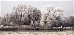 Frosty Morning near Henley (rogermccallum) Tags: winter thames river frost walkers henley platinumheartaward