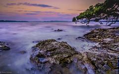 DSCF0185.jpg (Lens Cap1) Tags: longexposure sea newzealand rocks maraetai puhtakawa