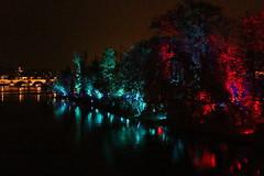 IMG_3115 (Katie Abruzzi) Tags: pink net lights republic purple czech prague multimedia signalfestival