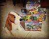 Hush Puppies and fake lego Jurassic World (janetsaw) Tags: blue brick lego echo fake charlie characters dinosaurs triceratops jurassicworld