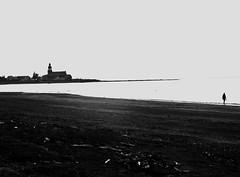solo (photosgabrielle) Tags: ocean mer gaspesie photosgabrielle