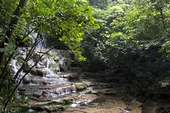 Selva Maya (ramosblancor) Tags: longexposure naturaleza nature mxico ro river landscape waterfall selva paisaje jungle palenque cascade chiapas forests cascada calcareous bosques tropicalrainforest largaexposicin calcreo senderomotiep