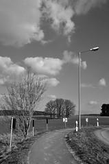 Baumgruppe hinter der Kurve (Lichtabfall) Tags: trees sky blackandwhite monochrome clouds landscape blackwhite felder himmel wolken fields landschaft bume weg strassenlaterne kurve buchholz baumgruppe buchholzidn