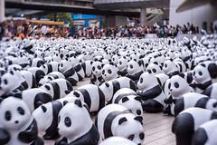 1600Panda (Chowvy) Tags: lomography panda event 58mm amazingthailand centralbangkok 1600pandas wwfthailand bangkoksmiles centralembassy 1600pandasworldtour bangkoktourismdivision 1600pandasplusth 1600pandasplus