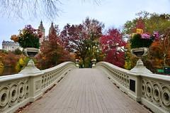 Central Park-Bow Bridge, 11.07.15 (gigi_nyc) Tags: nyc newyorkcity autumn centralpark autumnleaves autumncolors fallfoliage bowbridge thelake