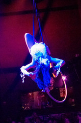 IMGP6642 (dko1960) Tags: sac cirque 2016 elementa