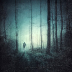 haunted forest (Dyrk.Wyst) Tags: trees misty forest square landscape jump solitude mood glow path cyan silhouettes atmosphere eerie spooky textures cinematic ghostly baretrees iphone photoshelter