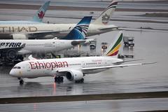 Ethiopian Airlines Boeing 787-8 ET-ARF (atcogl - ATC @ YYZ) Tags: toronto ontario canada wet rain plane airplane ramp aircraft jet aeroplane boeing heavy et airliner pearson yyz eth widebody ethiopian 787 staralliance dreamliner 7878 cyyz etarf b788