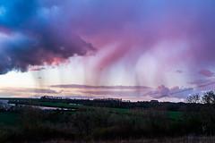 Purple Rain (Gerry Lynch) Tags: england rain weather unitedkingdom gb salisbury wiltshire