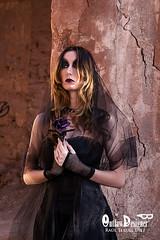 Dark Rose (Ral Teruel Diez) Tags: beauty rose dark rosa fotografia sesion belleza gotico oscura gotica
