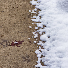 Snowhere (jaxxon) Tags: winter snow abstract cold macro square lens concrete prime frozen leaf nikon melting micro gradient fixed abstraction melt 28 nikkor melted chill f28 vr afs chilled spatter twotone spattering 105mm 2016 105mmf28 d610 spattered f28g jaxxon 105mmf28gvrmicro nikkor105mmf28gvrmicro nikon105mmf28gvrmicro jacksoncarson nikond610