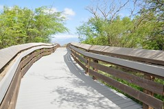 Kealia Coastal Boardwalk with return beach walk (Jeannette Greaves) Tags: beach wildlife refuge kealia naturalpond kealiapondnationalwildliferefuge
