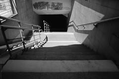 untitled (Anton Zabermach) Tags: urban blackandwhite bw film analog 35mm fujifilm nikkor acros nikonfe2 selfdeveloped d23 50mmf18ai