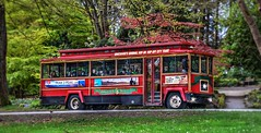 Faces of people going by (Images by Christie  Happy Clicks for 2016!) Tags: trees red people canada bus vancouver nikon focus tour bc ride trolley tourists transportation stanleypark touring nikond5200