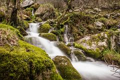 Nacimiento del Asn (jrgexp) Tags: espaa naturaleza musgo verde green nature water rio river waterfall moss spain agua natural silk seda nacimiento cantabria cascada ason cantabriainfinita