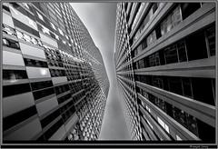 La Defense (Franois Leroy) Tags: france architecture tour noiretblanc perspectives lignes batiment dfense puteaux franoisleroy