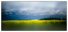 dark skies (josefontheroad) Tags: elitegalleryaoi bestcapturesaoi