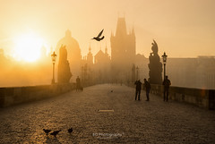Sunrise on Charles Bridge. (bgfotologue) Tags: tower church silhouette landscape photography photo europe czech prague image praha czechrepublic imaging charlesbridge vltava  bohemians   centraleurope 2016     bgphoto   esko  eskrepublika 500px  tumblr  bellphoto