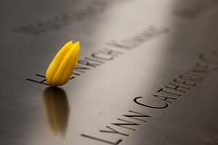 9-11 Memorial. NYC (Rafael Rodrguez.) Tags: nyc newyork memorial nuevayork 11s