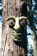 Cara feia? (Oncotive!) Tags: fauna naked aves animais arara cachaa alambique valeverde