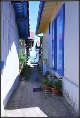 Les volets bleus (Les photos de LN) Tags: ruelle plage cabane volets alle bassindarcachon pcheurs bleus lherbe aquitaine impasse villageostricole