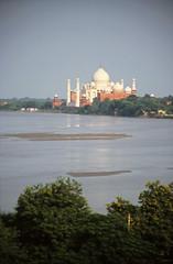 Taj Mahal & Yamuna River from  Red Fort, Agra (Niall Corbet) Tags: india river tajmahal agra redfort yamuna