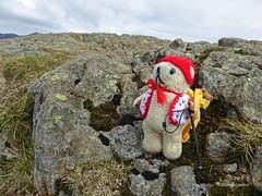 LD 3 Sun 1 Walla Crag & DT 2 (g crawford) Tags: bear lake ted danger teddy lakes lakedistrict teddybear dt ld tottie wallacrag wallacrags dangerted tottieted