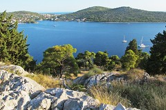 the bay from above :) (green_lover) Tags: trees sea summer water landscape bay rocks view croatia fromabove hills rogoznica