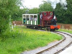 P1050748 (Hampton & Kempton Waterworks Railway.) Tags: loop devon galaday 2015 darent