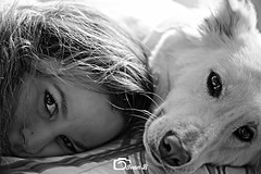 MIS DOS AMORES, (OLAFO BEC) Tags: blackandwhite dog blanco beauty hair eyes negro perro ojos wife mirada mascota belleza 105mm d610 pett nikond610